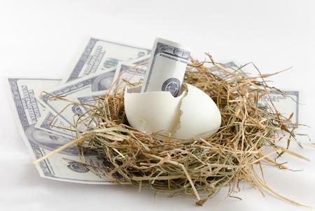 gniazdo jaj: dolarów banknotów w skarbonkę