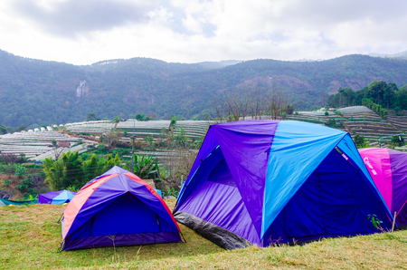 Chaing Mai,Thailand January 1,2015: Tourist camping tents at Doi Inthanon National Park Mountain in Chiang Mai,Thailand