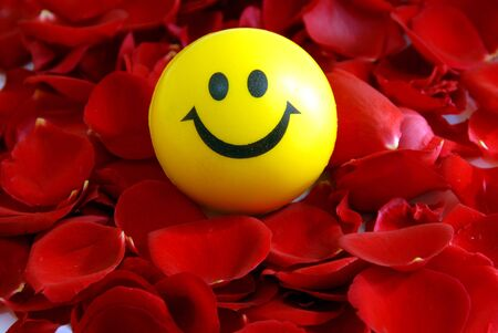 valentine rose flower petals and smile Stock Photo - 4328155