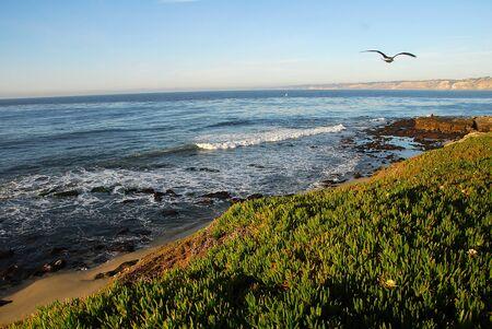 La Jolla sea beach coast in san diego california