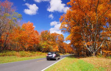 scenic drive in Orange Yellow Fall Foliage colors of Maple tree in Autumn Stock Photo