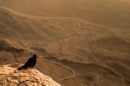 sinai peninsula: View from Mount Sinai. Egypt.