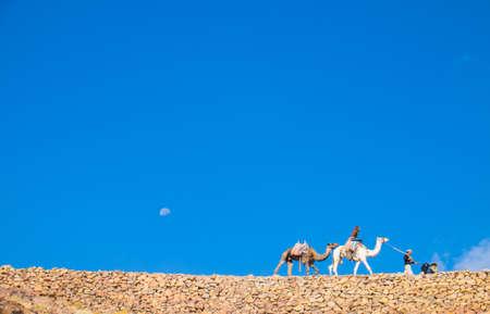 mount sinai: Guida Camel sale fino al Monte Sinai Archivio Fotografico
