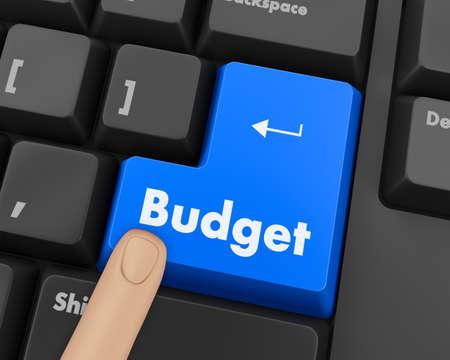 bankroll: Text budget button 3d render Stock Photo