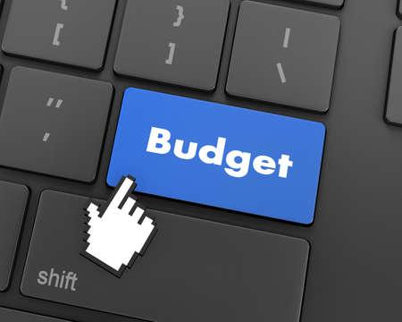 marginal: Text budget button, 3d rendering Stock Photo
