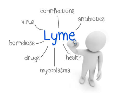 lyme: lyme text ,business man writing lyme concept ,Man Explain the meaning of lyme, 3d rendering Stock Photo