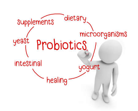 intestinal flora: probiotics text ,business man writing probiotics concept ,Man explain components of probiotics, 3d rendering