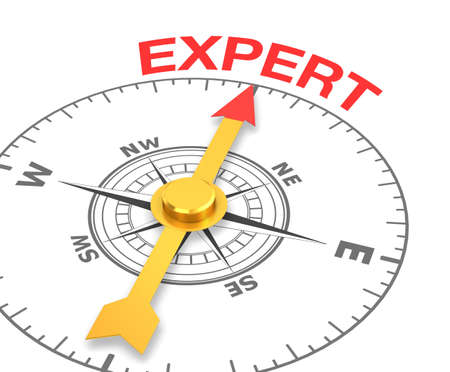 cian: compass with the needle pointing the word expert. 3d rendering