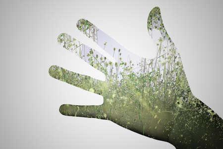 exposicion: verde de la naturaleza doble de la mano de la exposici�n