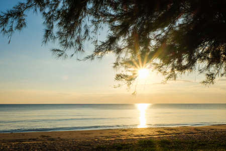 sway: Sunset at sea with trees sway at Chaolao Tosang Beach Thailand.