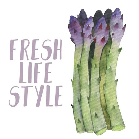 Asparagus vegetable stem. Bunch of fresh green asparagus sprout. Healthy food, dieting,