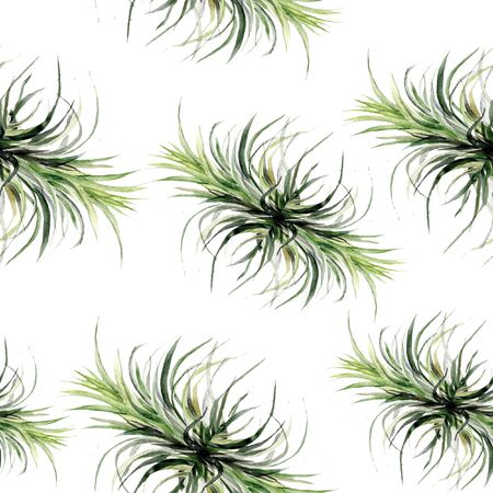 Print summer exotic jungle plant tropical green grass. Pattern, seamless floral on the black white geometric background. Nature wallpaper. Stok Fotoğraf
