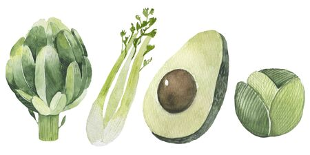 Fresh watercolor vegetables set. Hand drawn watercolor avocado, artichoke, celery, cabbage Stok Fotoğraf