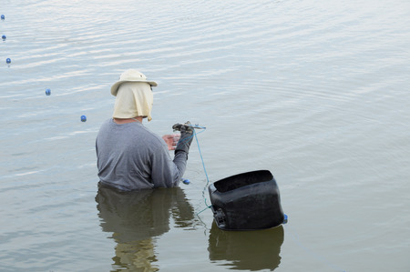 Commercial Fisherman photo