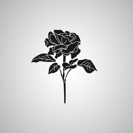 botanics: rose symbol decorative illustration Illustration