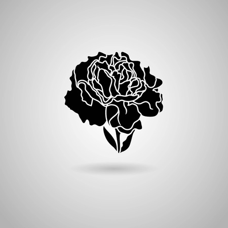 carnation flower  Vector illustration  Vector