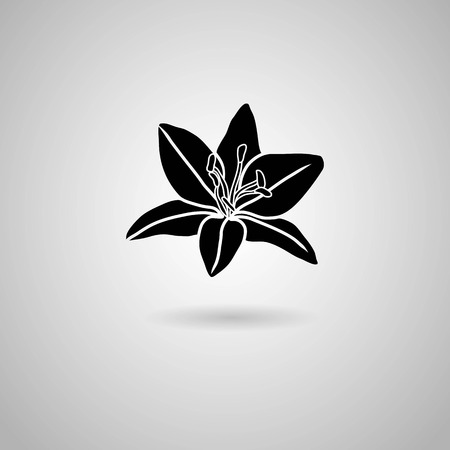 orchid branch: orchid flowers  Vector illustration