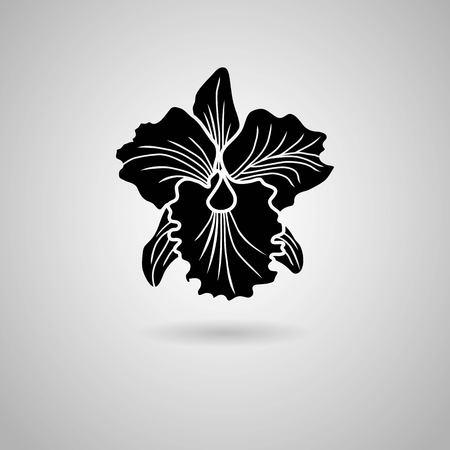 orchidee bloemen Vector illustratie Stock Illustratie
