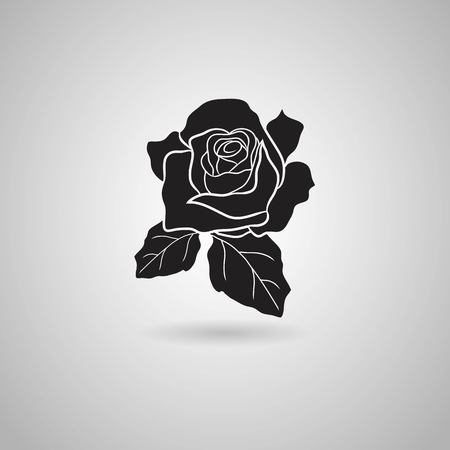 buds: rose  Vector illustration