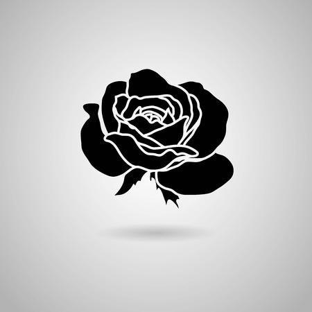 rose  Vector illustration  Vector