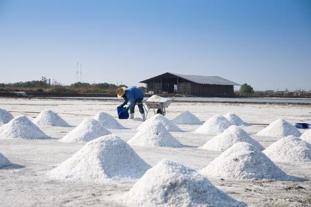 salt mine: Naklua Mass of salt in salt seaside farm, Samutsungkhram Thailand