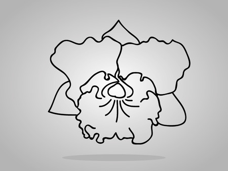 an inflorescence: orchid flowers . Vector illustration.