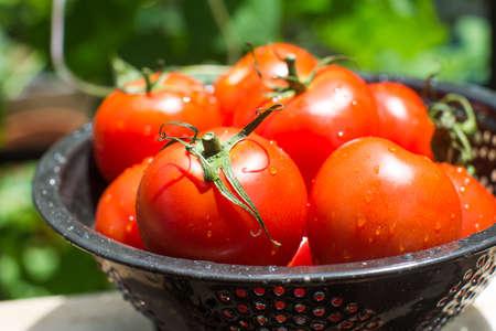 ingredient: Fresh red garden tomtoes raw ingredient healthy
