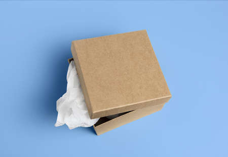 rectangle: open cardboard box isolated on a background.