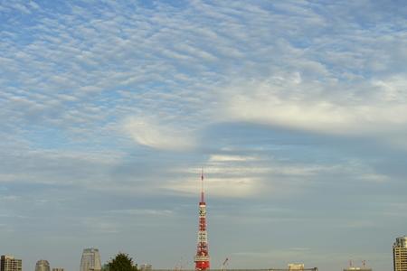 The Tokyo sky