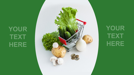 Vegetables in shopping cart - already done model of design with sample text photo