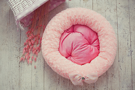 Pink pet mattress with flowers in interior photo