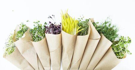 Fresh microgreen on the white background in natural light Standard-Bild