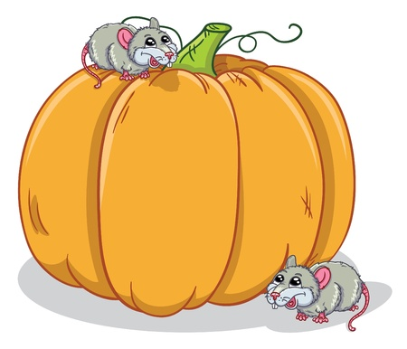rats and pumpkin Vector