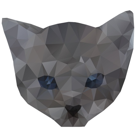 grey cat: geometrical vector illustration of kitten head