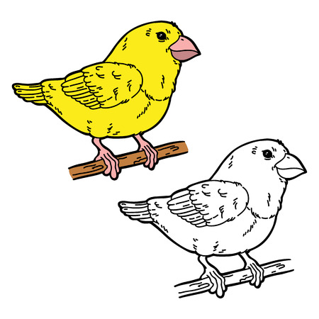 scrap book: funny bird. Vector illustration coloring page of happy cartoon bird for children and scrap book Illustration