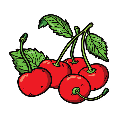 cute cherries. Vector cute hand drawn colorful cherry and leaf Vector