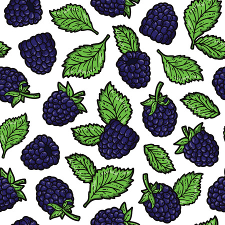 scrap book: blackberry pattern. Vector doodle seamless pattern with blackberries for wallpaper web page background surface textures textile scrap book design fabric menu