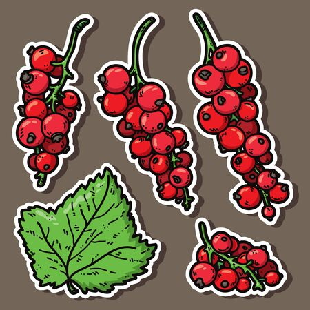 currant: cute currant. Vector stickers set of cute hand drawn colorful currant