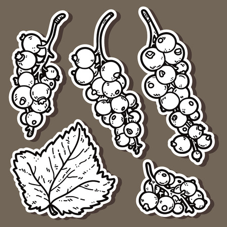 currant: cute currant. Vector stickers set of cute hand drawn currant Illustration