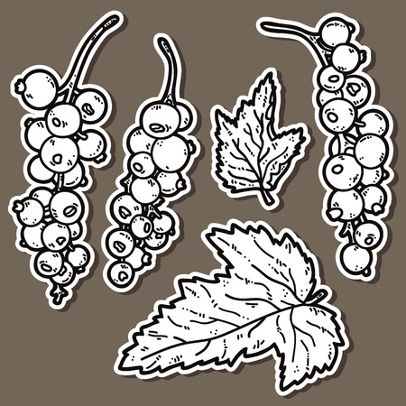 cute currant. Vector stickers set of cute hand drawn currant Vector