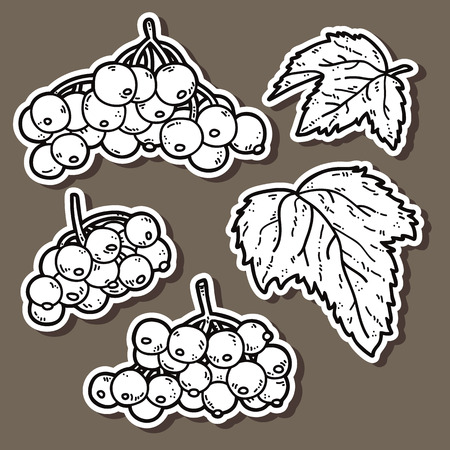 viburnum: cute viburnum. Vector stickers set of cute hand drawn viburnum Illustration