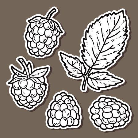 raspberries: cute raspberries. Vector stickers set of cute hand drawn raspberry Illustration