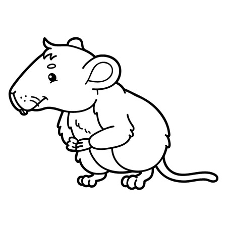 vole: Cute vole.  illustration of cute cartoon vole character for children, coloring and scrap book