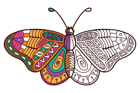 design drawing: Cute butterfly half coloring. Vector illustration of cute ornate zentangle butterfly for children or for adult anti stress coloring book