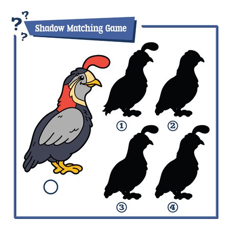 matching: illustration of shadow matching game with happy cartoon quail for children