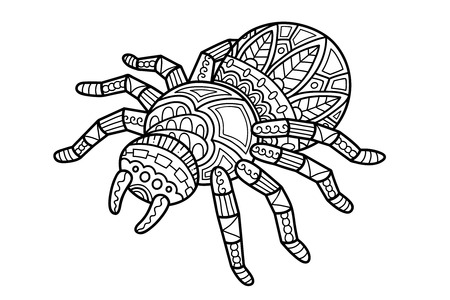 귀여운 거미. 어린이 또는 성인 안티 스트레스 색칠하기 책 귀여운 화려한 zentangle 거미의 벡터 일러스트 레이 션