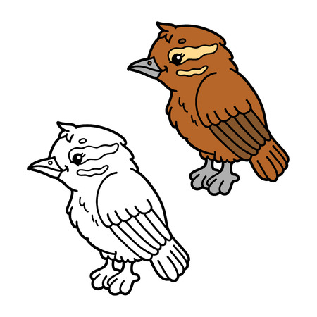 scrap book: funny xenops cartoon . Vector illustration coloring page of happy cartoon xenops bird for children, coloring and scrap book