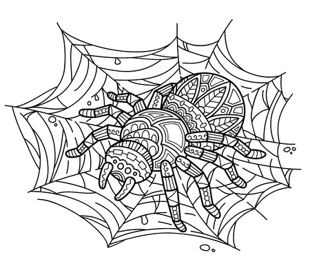 spiders: Cute spider on web. Vector illustration of cute ornate zentangle spider for children or for adult anti stress coloring book Illustration