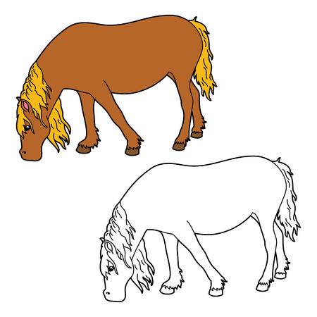 Colorear caballo. Vector Colorear educativo de caballo feliz de dibujos animados para niños, colorear y álbum de recortes