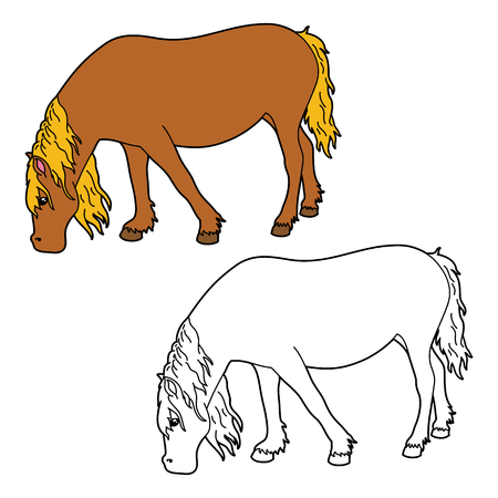 scrap book: horse coloring page. Vector educational coloring page of happy cartoon horse for children, coloring and scrap book